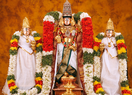 Srinivasa Kalyanam Jan 16 2021 9:00 AM - 12:00 PM SVCC Temple Sacramento